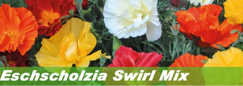 Eschscholzia Swirl Mix