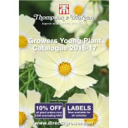 Alternatively why not visit our Direct to Grower website