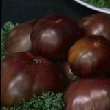 Tomato 'Black Russian' ™