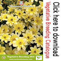 Vegetative Breeding Catalogue from Thompson & Morgan Wholesale