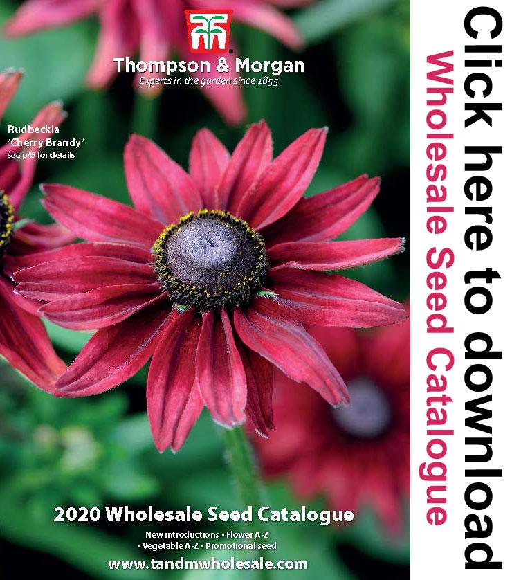 Wholesale Seed Catalogue | wholesale seeds and vegetative